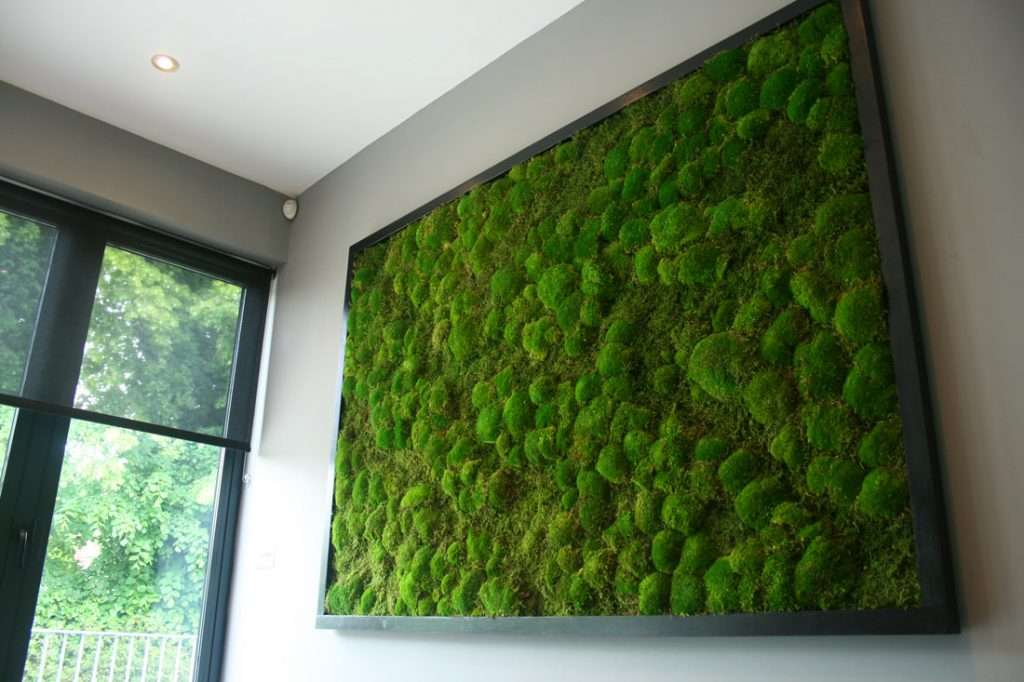 Acoustic moss wall