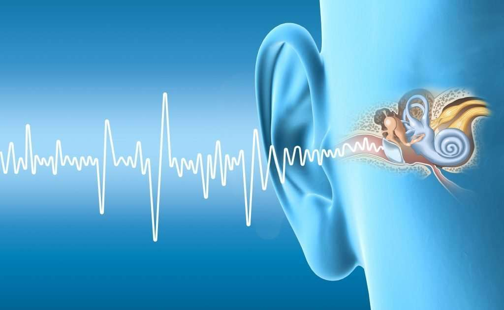 Human ear anatomy with sound wave
