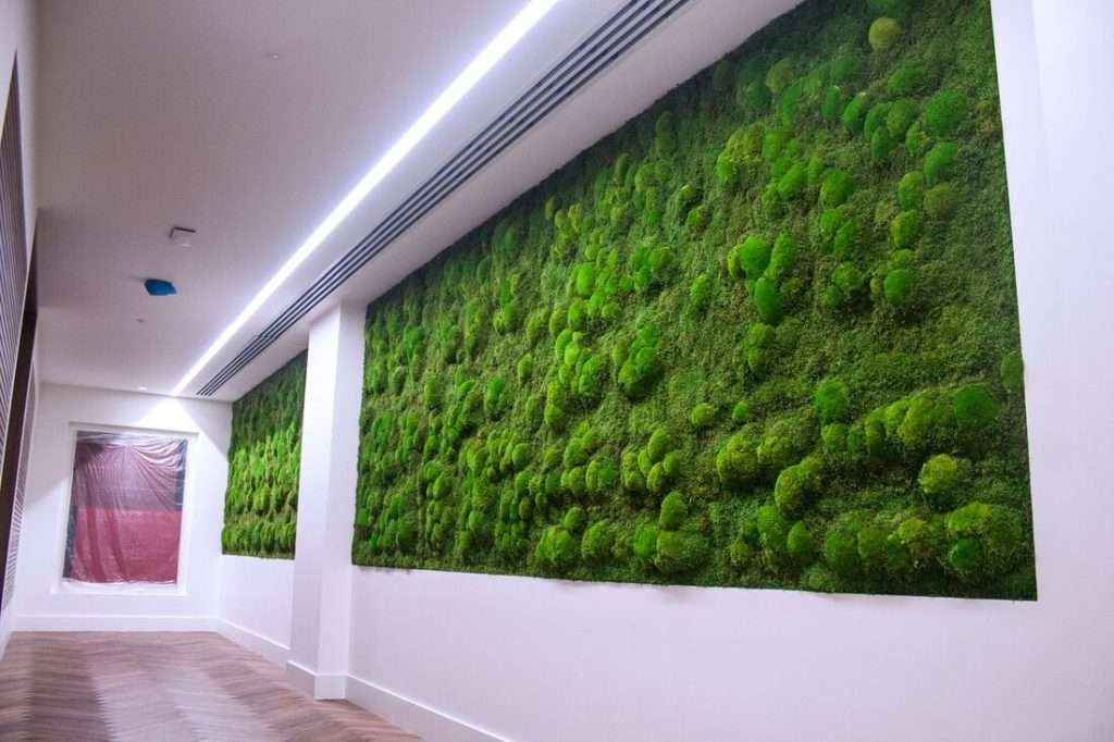 Preserved Moss Wall office acoustics