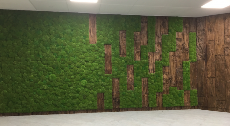 Moss-wall-feature-wall