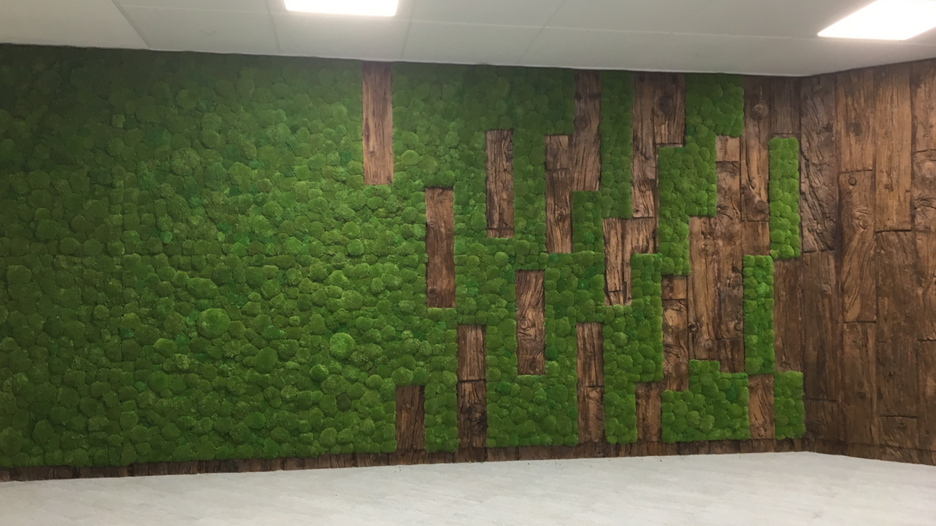 Moss wall feature wall