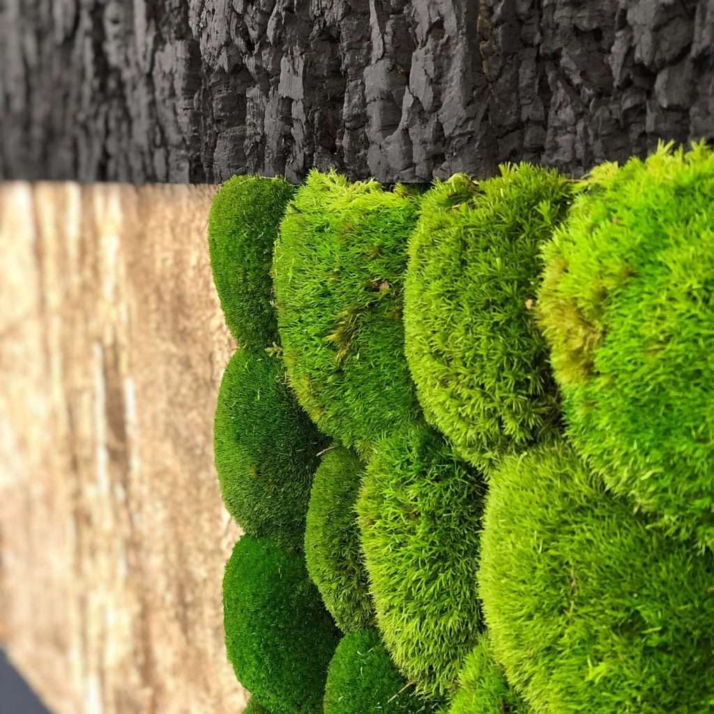 Reindeer Moss Wall with bark detail